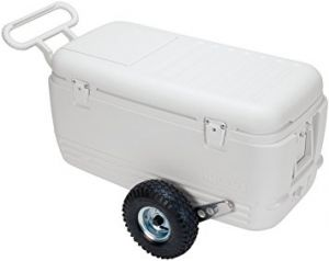 ALL TERRAIN COOLER 100